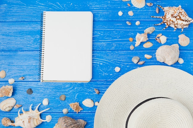 Layout of seashells and hat near notepad