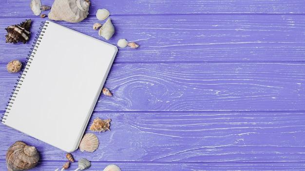 Layout of seashells and notepad