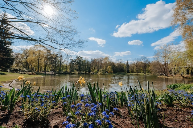 春のワルシャウのラジエニ公園