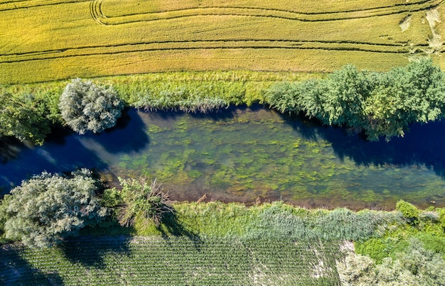 스트라스부르 남부의 작은 강 르 랭 토르 투-그랑 에스트, 프랑스