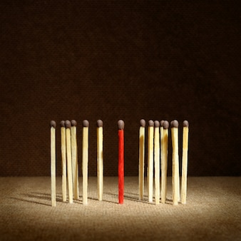 Leadership concept - one match stand out from others