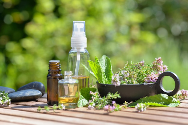 Leaf of aromatic plant and  bottles of essential oil  arranged on a table in a garden