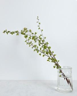 테이블에 꽃병에 잎 지점
