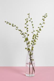 테이블에 꽃병에 잎 가지