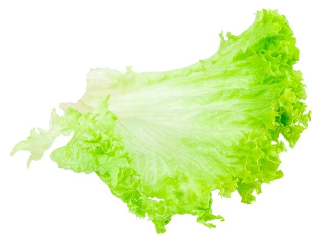 Лист свежий салат, изолированные на белом фоне.