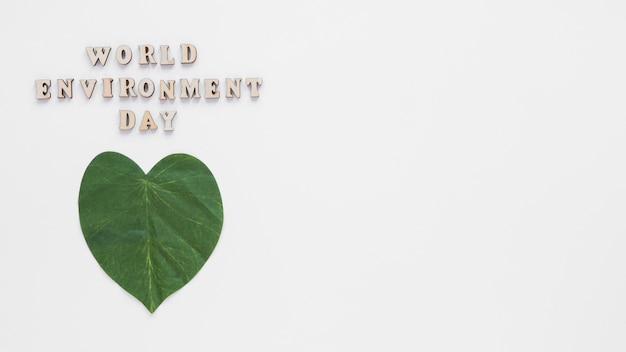 Leaf heart with copy space on white background