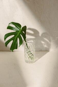 白いテーブルの上のコップ一杯の水の葉