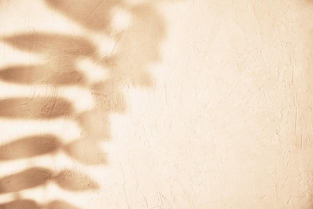 Тень листа на пастельном фоне. творческий абстрактный фон. образец тени природы