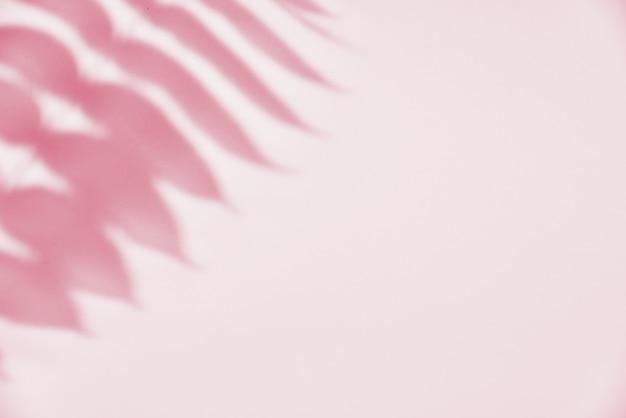 ピンクの葉の影。創造的な抽象。自然の影のパターン