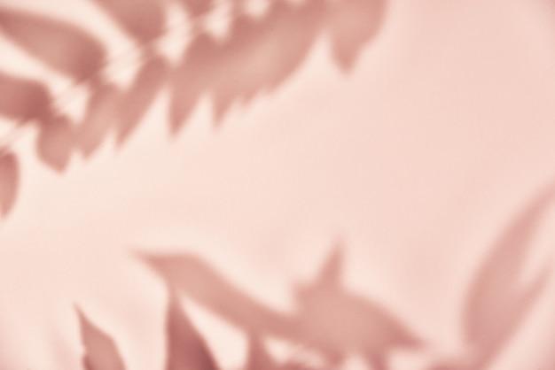 분홍색 벽에 잎 그림자입니다.