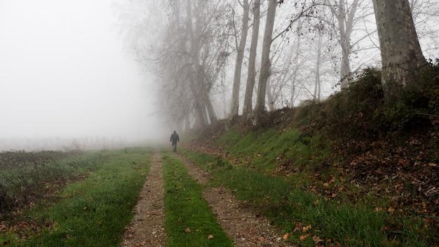 霧の中を歩く男と秋の葉のない木。田園風景。孤独の概念
