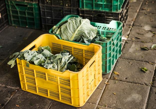 슈퍼마켓에서 플라스틱 상자에 잎이 많은 채소