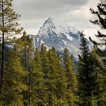 Leah peak, malign lake, 재스퍼 국립 공원, 앨버타, 캐나다