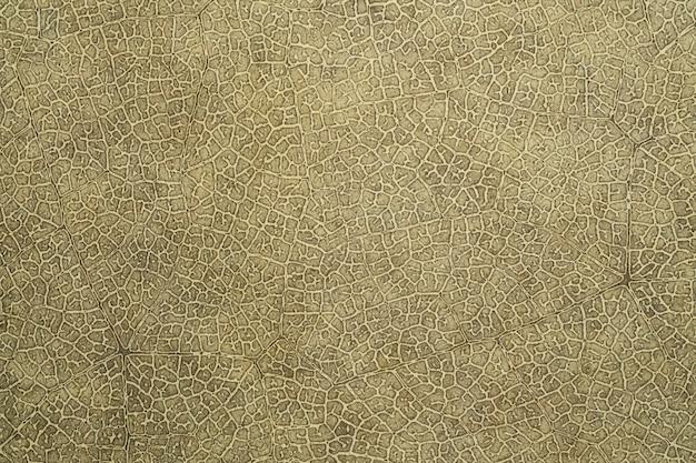 Leather animal skin surface textured design background