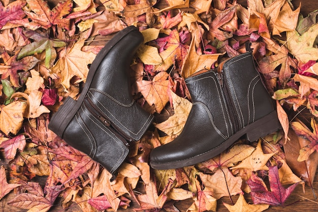 Leather boots on dry leaves background