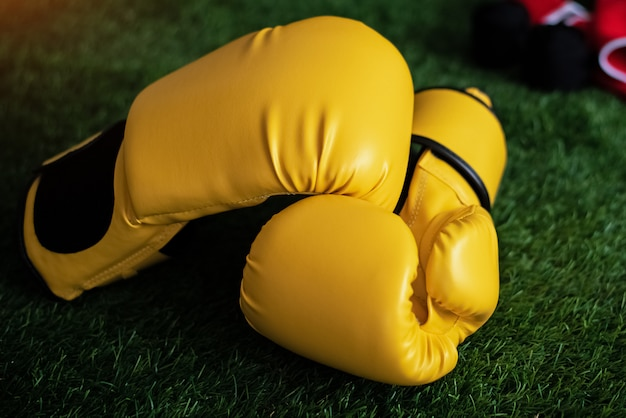The leather gloves put on green grass ground floor, blurry light around
