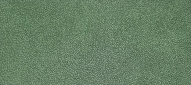 革の緑の質感