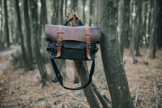 Leather hiking bag hanging on a branch of a tree in a forest