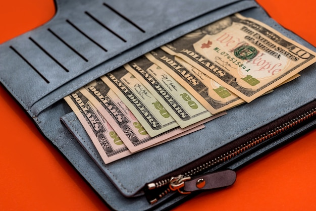 Leather purse with banknotes of dollars