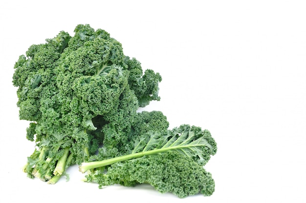 Leave of kale cabbage