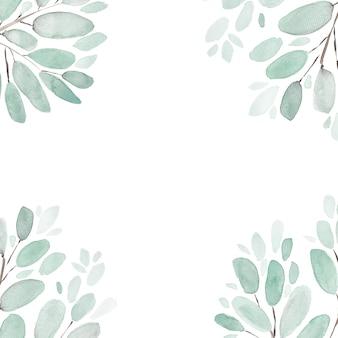 나뭇잎과 가지 수채화 그림 배경. 손으로 그린 꽃 요소 집합. 수채화 식물 그림. 유칼립투스, 올리브, 녹색 잎.