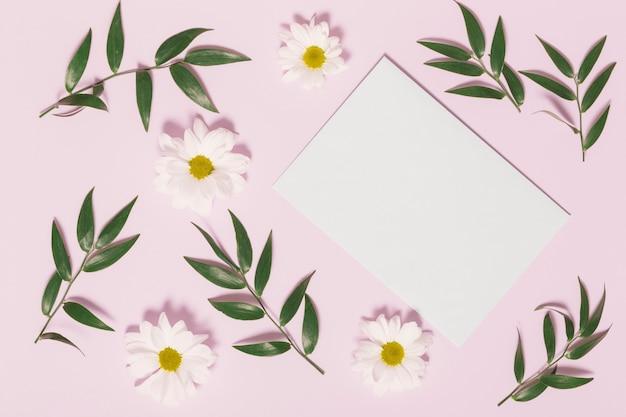 Листья и ромашки вокруг листа бумаги Бесплатные Фотографии