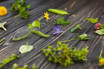 Leaves and flowers on wooden textured background