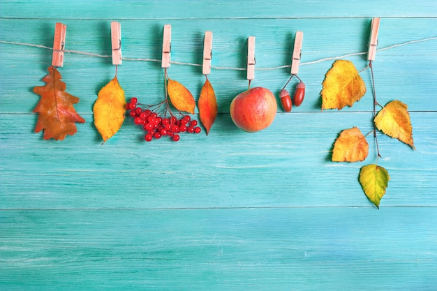 Leaves, apples, acorns in autumn on a wooden background. the leaves hang on a rope with clothespins.