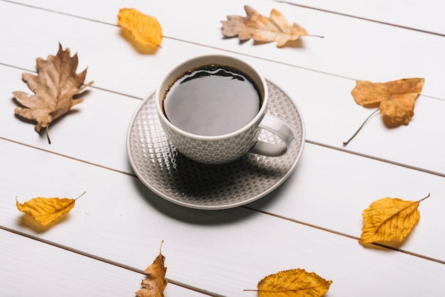 Leaves aroundcoffee cup