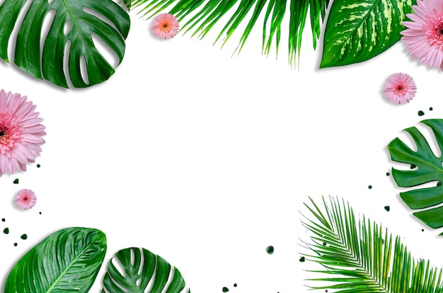 Leaves background white with green leaves and flowers flatlay
