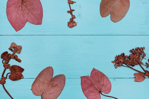 Leaves on blue wood