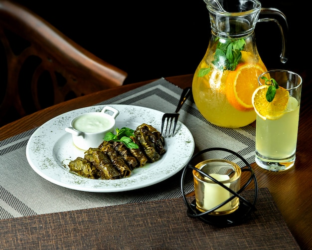 Leaves dolma and sour yogurt with citrus detox