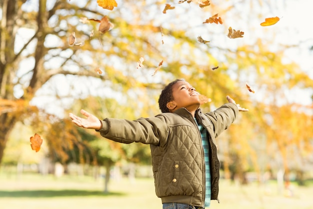 Leaves drop onto a little boy with outstretched arms