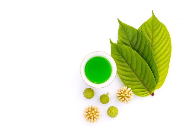Leaves, flowers, fruits and liquid of kratom or mitragynine on white isolated