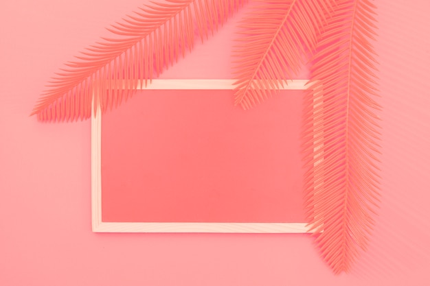 Leaves over the frame against coral background