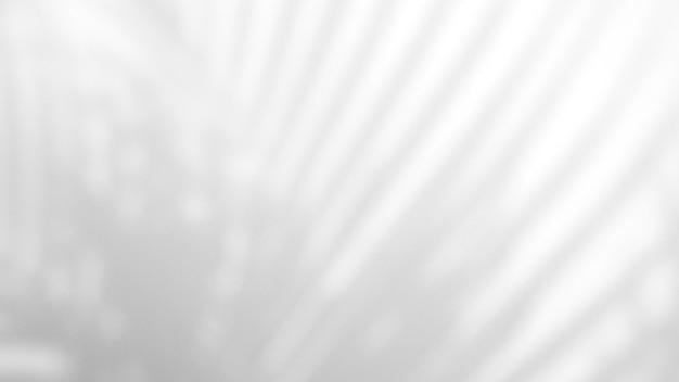 製品のプレゼンテーション、背景、モックアップ、夏の季節のコンセプトにオーバーレイするために、白いテクスチャの背景に自然な影のオーバーレイを残します