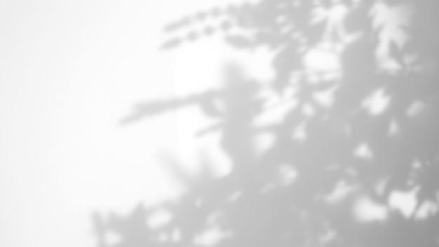 제품 프레젠테이션, 배경 및 모형, 여름 계절 개념에 대한 오버레이를 위해 흰색 질감 배경에 자연 그림자 오버레이를 남깁니다.