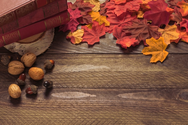 Leaves and nuts near books