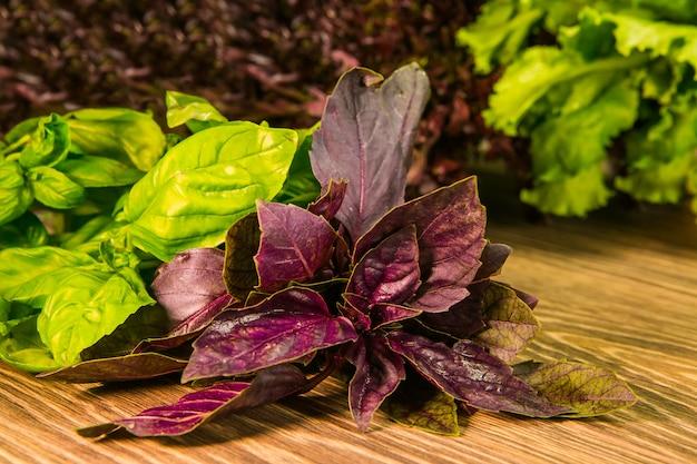 Листья салата и базилика на деревянной стене. приправа для кухни. зелень.