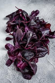 Листья швейцарского мангольда или салата мангольд. белый стол. вид сверху.