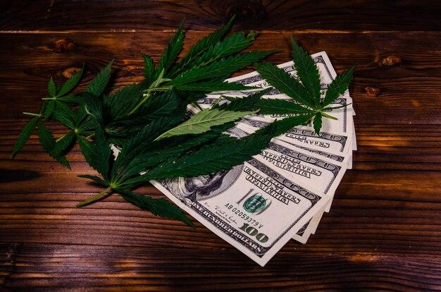 Листья растения каннабис и стодолларовые купюры на деревенском деревянном столе