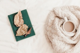 Leaves on book near hot drink in blanket