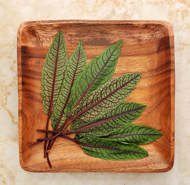 Leaves of sorrel on wooden