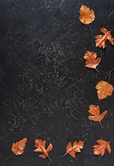 Leaves stained with gold paint on black