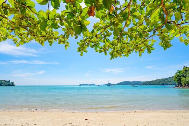여름 해변 나뭇잎 나무 프레임 놀라운 바다 맑고 푸른 하늘과 흰 구름 모래 사장에 부서 지는 파도 나무 잎 프레임 바다 위에 공간을 복사 합니다.