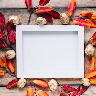Leaves and walnut around white frame