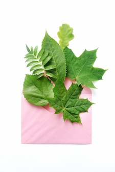 Leaves with a envelope