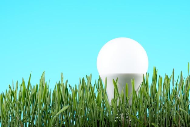 Led light bulb on green grass