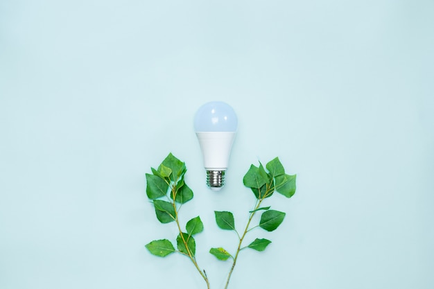 Led lightbulb between brances with tender green leaves symbolizing environmental awareness and saving electricity to preserve nature
