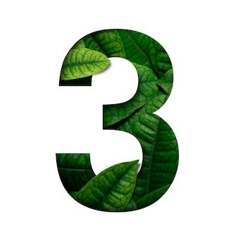 リアルアライブで作られたlefasナンバー3は、プレシャスペーパーカットの数字の形をしています。 leafsフォント。